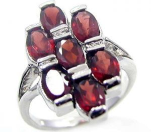 3.85ctw Genuine Garnet Solid 925 Sterling Silver Gemstone Ring (SJR10242)